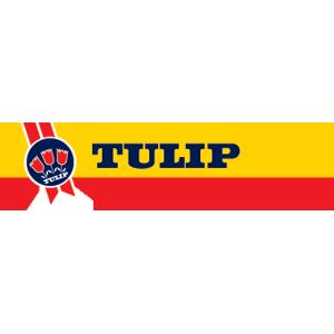 Logo-tulip